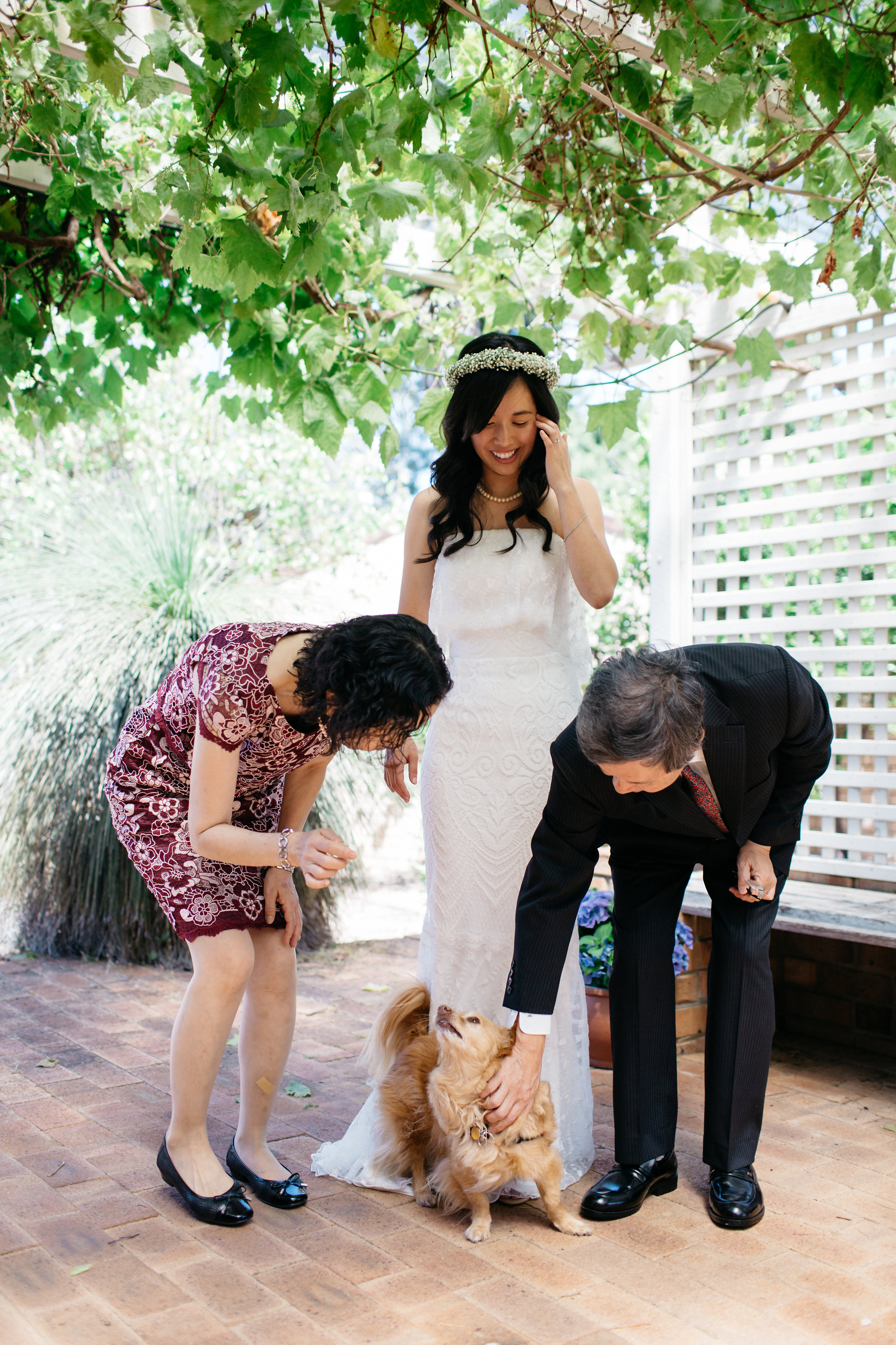 Bride, family and dog, Perth Kings Park Wedding
